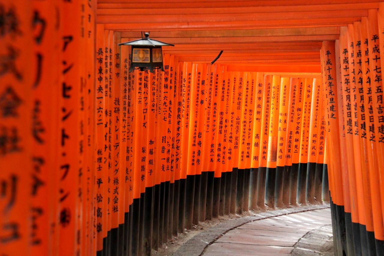 Risultati immagini per Santuario Fushimi Inari-Taisha - Giappone