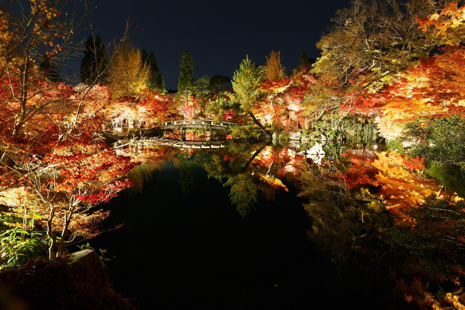 eikando_night_1.jpg