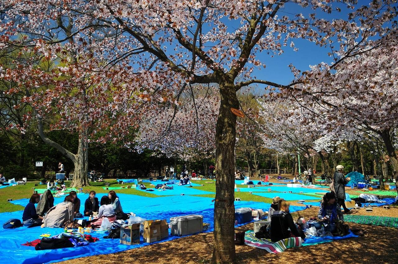 Guida di Kyoto zona per zona: Higashiyama - youinJapan.net