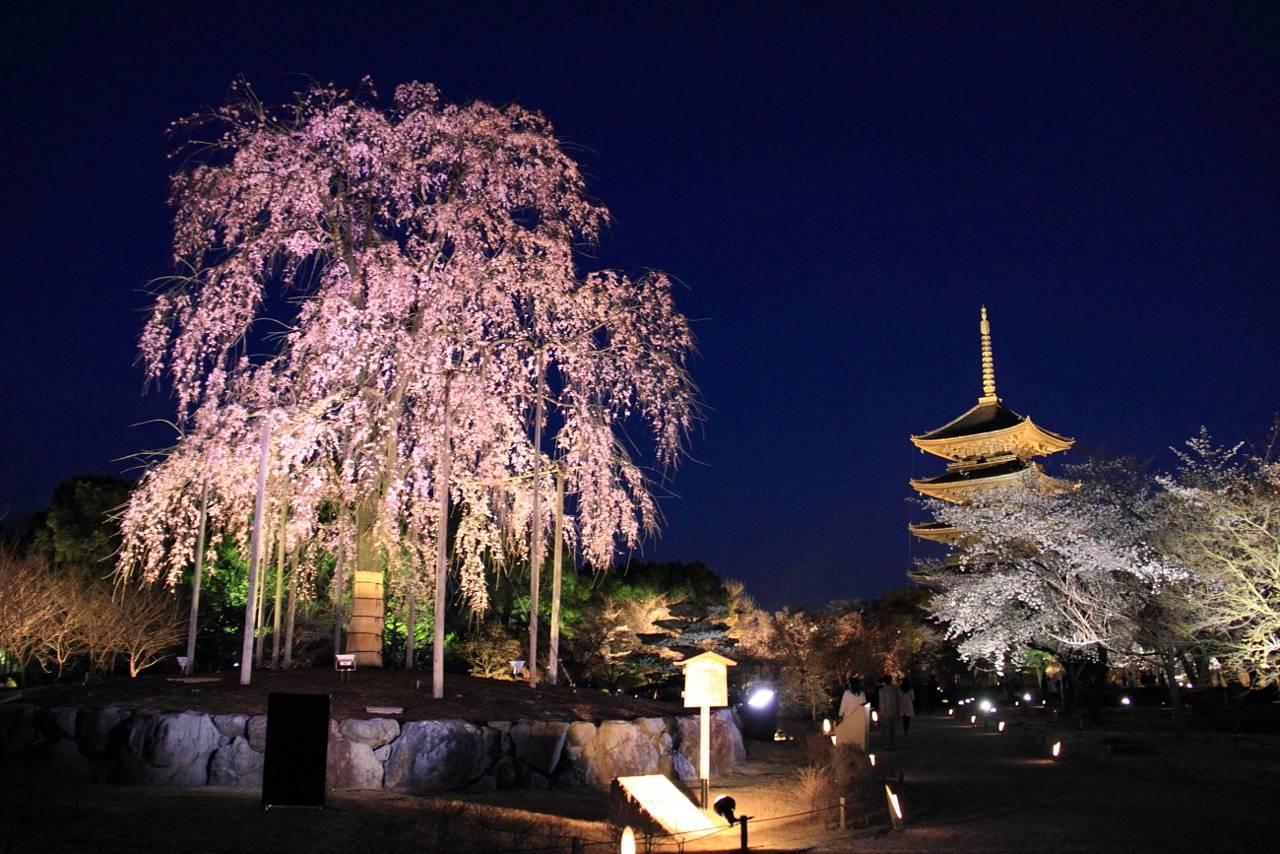 Guida Di Kyoto Zona Per Zona Zona Di Kyoto Station