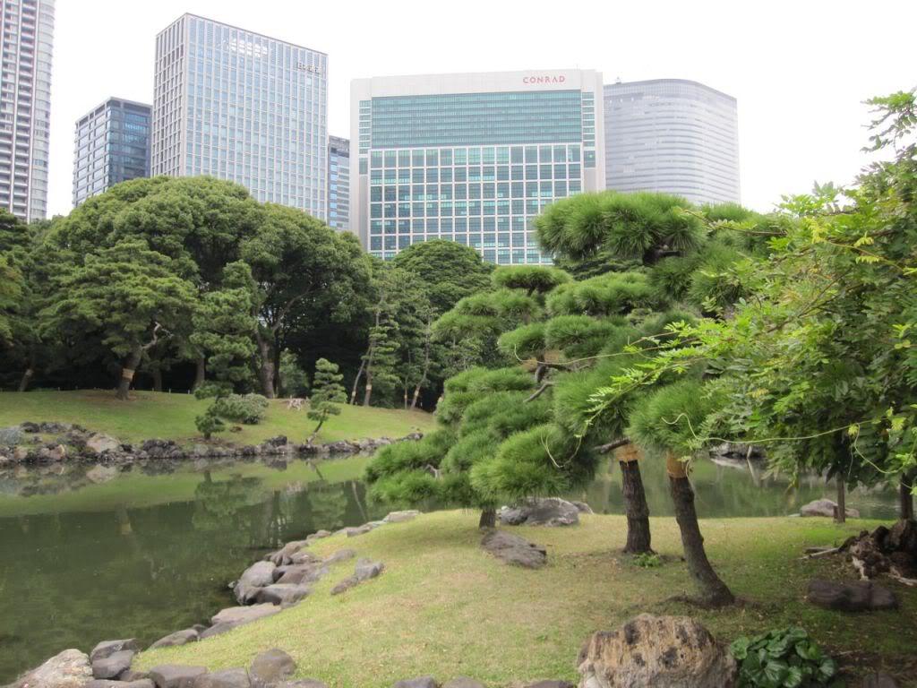 Guida di tokyo zona per zona shiodome shinbashi for Giardino hamarikyu